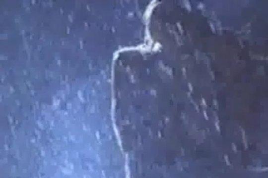 Страстная эротика под проливным дождём